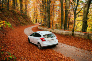 BremswegeImHerbst_Q_Depositphotos_56167999_C_myronstandret_Depositphotos-300x200 Vorsicht! Lange Bremswege im Herbst