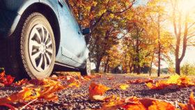 Herbst - Auto auf Landstraße