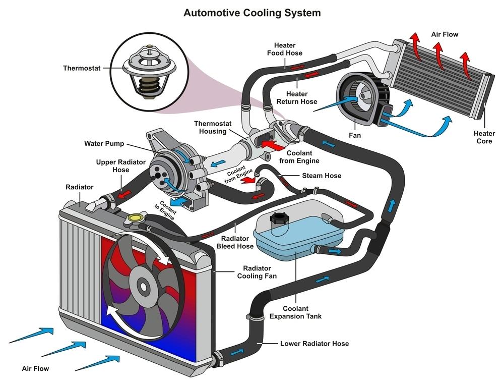 bild2-Kuehlsystem-auto Motor überhitzt – Häufigste Ursachen finden und beseitigen